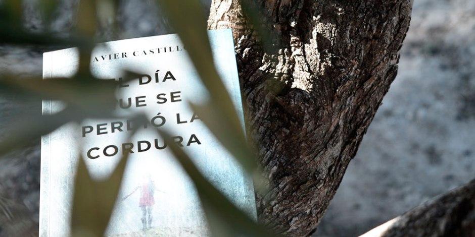 El día que se perdió la cordura de Javier Castillo: misterio en estado puro